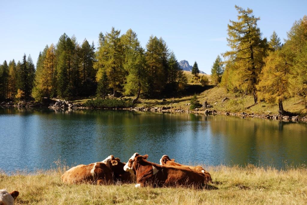 Lago di Bordaglia (foto: S. Famiani - diritti riservati)